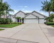 23453 Gracewood Circle, Land O' Lakes image