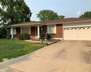 2936 Persimmon  Drive, St Charles image