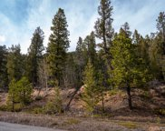 29871 Kings Valley, Conifer image