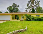 4224 Briarberry Lane, Tampa image