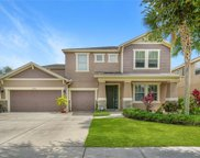 15608 Starling Water Drive, Lithia image