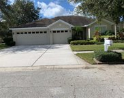 12523 Safari Lane, Riverview image