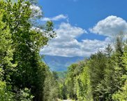 Lots 18&19 Little Bear Trail, Cosby image