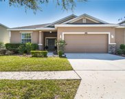 2356 Livorno Way, Land O' Lakes image