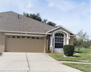 19234 Weymouth Drive, Land O' Lakes image