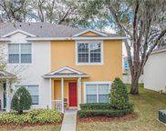 3461 High Hampton Circle, Tampa image