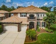 11257 Biddeford Place, New Port Richey image