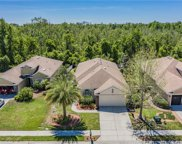 11614 Bathgate Court, New Port Richey image