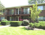 1152 Osterman Avenue Unit #B, Deerfield image