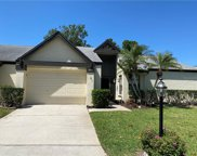 3489 E Woodmont Way, Palm Harbor image