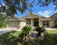 8215 Myrtle Point Way, Tampa image