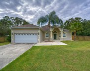 27344 Green Willow Run, Wesley Chapel image