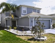 7943 Carriage Pointe Drive, Gibsonton image