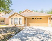 6519 Summer Cove Drive, Riverview image