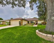 3583 Fairway Forest Drive, Palm Harbor image