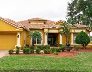 800 Belted Kingfisher Drive S, Palm Harbor image