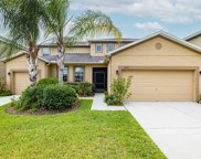 12105 Streambed Drive, Riverview image