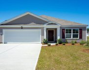 163 Pine Forest Dr., Conway image