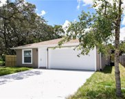 2614 E Genesee Street, Tampa image