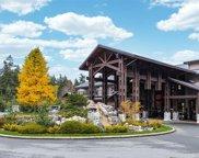 1175 Resort  Dr Unit #213, Parksville image