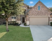 12506 Red Maple Way, San Antonio image