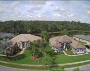6525 Vanda Lane, Land O' Lakes image