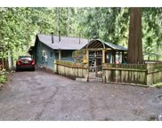 69418 E RIVER TRL, Welches image