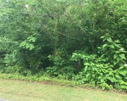 5697 Apple Meadow Drive, Gibsonville image