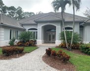 2700 Buckthorn Way, Naples image