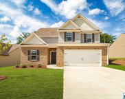 4645 Winchester Hills Way, Clay image