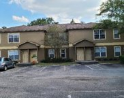 36232 Misty Oak Drive Unit 103, Zephyrhills image