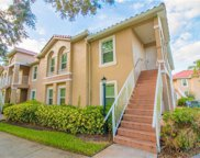 2838 Osprey Cove Place Unit 204, Kissimmee image