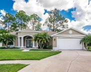 21636 Silver Bay Place, Land O' Lakes image