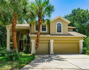 16002 Grantham Place, Tampa image