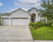 11444 Callaway Pond Drive, Riverview image