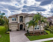 31154 Spruceberry Court, Wesley Chapel image