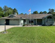 11358 Doxsey Hill Circle, Spring Hill image