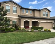 21801 Billowy Jaunt Drive, Land O' Lakes image