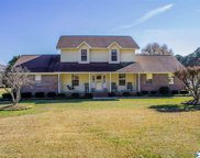 1120 County Road 144, Gaylesville image