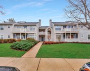 56 Chinkaberry Court, Howell image