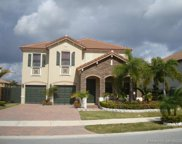 11333 Sw 243rd Ter, Homestead image