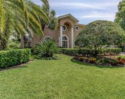 3902 Moreno Drive, Palm Harbor image