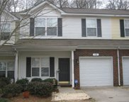 115 Crystal Springs  Court, Fort Mill image