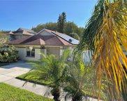 11913 Hickorynut Drive, Tampa image