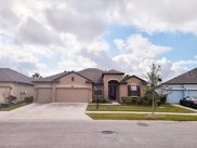 11617 Iris Spring Court, Riverview image