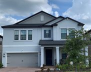 16305 Hyde Manor Drive, Tampa image