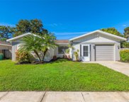 2059 Eagle Run Court, Clearwater image