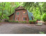 25625 E SALMON RIVER  RD, Welches image
