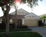 11149 Rodeo Lane, Riverview image