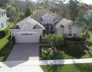 8522 Eagle Brook Drive, Land O' Lakes image